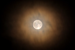 Super Moon through the Clouds (acefreecell) Tags: super moon november astrology clouds light sony alpha a77ii