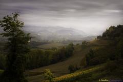 Langhe - Piedmont (Italy): Autumn evening (www.danbos.it) Tags: autumn langhe hills vineyard wine elitegalleryaoi bestcapturesaoi