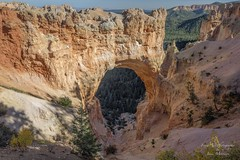 Natural Bridge - Bryce Canyon National Park - Utah (Freshairphotography) Tags: bryce brycecanyonnationalpark nationalpark naturalbridge arch geology brycecanyon naturalbridgebrycecanyon utah stone erosion nature natural usa