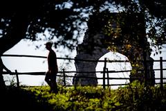(massimopisani1972) Tags: parco degli acquedotti roma rome italia italy massimopisani massimo pisani nikon d610 20300