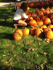 Kissy's Legs 11/6/16 (kissy_izuki) Tags: wife halloween pumpkins outdoors girlfriend skirt pantyhose nylons