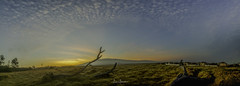 Sunrise @ Lualai Panorama 01 (JUNEAU BISCUITS) Tags: panorama lualai lualaisubdivision waimea kamuela sunrise field hawaii bigisland clouds nikond810 nikon skyscape landscape