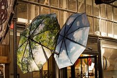 (c) Wolfgang Pfleger-8372 (wolfgangp_vienna) Tags: schweden sweden sverige stockholm schirm schirme umbrella