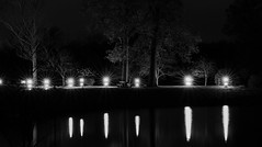 Night Reflection (mswan777) Tags: dark night reflection light tree park trail outdoor ohio bw nikon d5100 sigma 70300mm autumn city bench travel cleveland long exposure