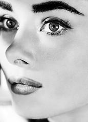 Audrey-Hepburn-Portrait-Everything Audrey (28) (EverythingAudrey) Tags: audreyhepburn audrey hepburn
