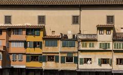 Life in Ponte Vecchio (benson.ruth30) Tags: florence italy europe ponte vecchio architecture nikon d750