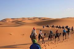 Deserto do Saara (claudiaimaizumi) Tags: saara deserto sahara desert exchange trip viagem marrakesh marrocos morocco intercambio