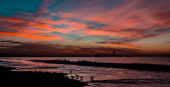 Winter Morning--in explore (beachpeepsrus) Tags: shore alamitosbay water wave california dawn