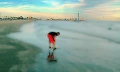 Focused (netaloid) Tags: boy beach ocean sky galveston texas gimp painting