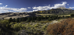 Sands of Time (courtney_meier) Tags: colorado coloradorockies fall greatsanddunesnationalpark landscape medanopeak nationalpark rockymountains sanluisvalley sangredecristo southernrockies usnationalpark autumn dunes panorama pine sand sanddunes