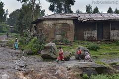 villaggio sotto la pioggia, hamlet under the rain (paolo.gislimberti) Tags: case buildings povertà poverty gente people fotografiadistrada streetphotography etiopia ethiopia
