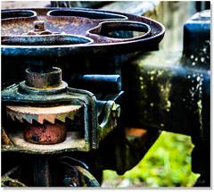 The Gears We Move (Sigpho) Tags: sigpho nikon gears