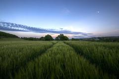 Twilight Harvest (Gareth Wray Photography - Thanks 5.5 Million Hits) Tags: road county uk bridge blue ireland sunset red summer vacation sky