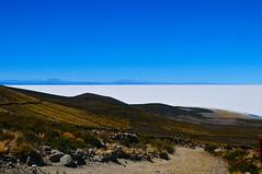 Bolivia-salar de Uyuni-view from isla de volcan Tunupa (venturidonatella) Tags: island desert salt bolivia isla salar uyuni volcan vulcans tunupa saltdesert
