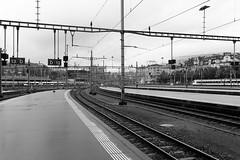 出发 黄金列车 (LouisQiu) Tags: street travel bw train switzerland europe swiss luzern 旅游 旅行 黑白 瑞士 欧洲 文化 火车 火车站 轨道 琉森 卢塞恩