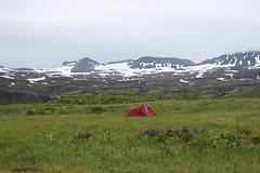 Camping site of Hornvik, Hornstrandir Nature Reserve (Westfjords)