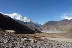 Der 7051 m hohe Nilgiri (Alfesto) Tags: nepal trekking himalaya nilgiri kagbeni muktinath jharkot uppermustang kaligandakital knigreichmustang