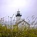 Phare de Pontusval (Lighthouse)