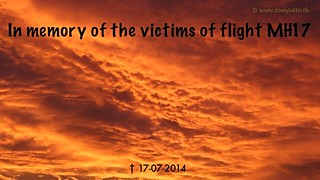 In memory of the victims of flight MH17