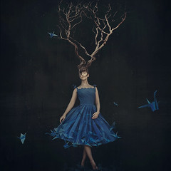 empty nest (brookeshaden) Tags: selfportrait painterly tree nature blackbackground fairytale nest surrealism fineart conceptual minimalist mothernature bluebirds whimsical treehead emptynest origamicrane loveandloss brookeshaden blueorigamibird
