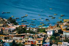 Terminal Pesquero de Coquimbo (/MiguelTapia) Tags: chile people port landscape coquimbo fishing fisherman gente culture terminal cultura pescador pescero