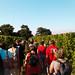 Balade dans les vignes du Château Le Camplat