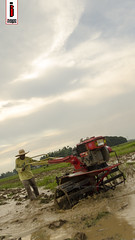Araro 07 (Soil Cultivation) (ilusyonimages) Tags: street tractor asian photography asia farm philippines farming images illusion filipino farmer ricefields handtractor ilusyon