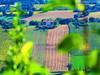 Recanati, Marche, Italy - contryside -by Gianni Del Bufalo (CC BY-NC-SA) (bygdb - Gianni Del Bufalo (CC BY-NC-SA)) Tags: italy tourism nature rural landscape italia campagna recanati marche marken italië macerata marches italiancountryside contryside marcheregion rurale campiñaitaliana themarches الريف campoitaliano italiantourism марке الإيطالي イタリアの田舎 destinazionemarche 米蘭義大利旅遊義大利旅遊資訊 意大利马尔凯 recanatimacerata italienischenlandschaft italakamparo 意大利乡村 итальянскийместность італійськиймісцевість destinazionemarche regionedellemarche carlinoancona италианскатапровинция