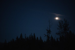 DSC00852 (Micheal Picking) Tags: camping moon night oregon campfire mthood moonlight firelight a7s