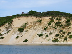 P7190151 (Putneypics) Tags: vacation beach island sand capecod erosion shore marthasvineyard geology obama bluff glacial vineyardsound coastalerosion thevineyard terminalmoraine putneypics