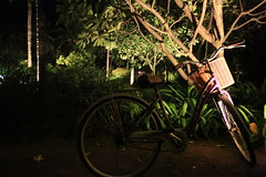 A Bicycle in the Dark (772A0324) (Passenger32A) Tags: travel bicycle thailand resort evason pranburi