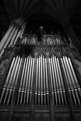Pipe Dream (jbilohaku) Tags: nyc bw usa newyork church pipe patrick iglesia organ eua organo patricio usono preejo novjorko