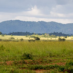 Kidepo National Park, Uganda