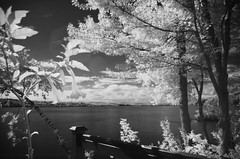 Infrared (Ennev) Tags: summer sky cloud lake canada tree water clouds day pentax cloudy quebec montreal infrared k5 northhatley lakemassawippi massawippi pentaxk5 k5ii pentaxk5ii