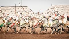 Fantazia Ryders (aminefassi) Tags: travel people copyright horse sport cheval action culture morocco maroc tradition ryder rider cavallo rabat 6d fantazia baroud equestre ef70200mmf28isii ainatiq aminefassi aminefassicom