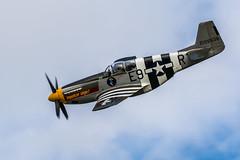 20140830-DSC_3004 (wacamerabuff) Tags: airplane fighter aircraft wwii mustang usaf p51 historicflightfoundation