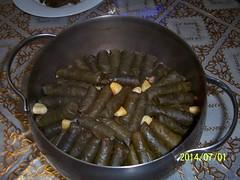 012 (dr.kattoub) Tags: stuffed               stuffedcarrot                         tammamkattoub drtammamkattoub