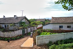 Rural Homes in North Korea (Ray Cunningham) Tags: homes rural north korea dprk coreadelnorte