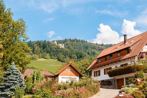 Vue sur le château Schauenburg