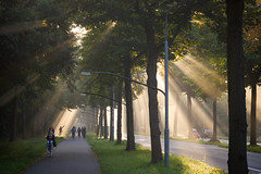 Aangeraakt ALT (zsnajorrah) Tags: shadow people urban haarlem netherlands candid ef50mmf14 transportation goldenhour crepuscularrays haarlemmerhout spanjaardslaan eos600d