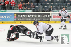 "DEL15 Kölner Haie vs. Thomas Sabo Ice Tigers 19.09.2014 088.jpg • <a style=""font-size:0.8em;"" href=""http://www.flickr.com/photos/64442770@N03/15268983656/"" target=""_blank"">View on Flickr</a>"