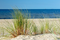 (klgfinn) Tags: autumn balticsea grass landscape sand sea ship shore sky skyline water