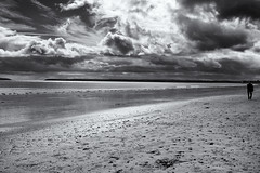 let your soul and spirit fly into the mystic (dorameulman) Tags: claycastle youghal cocork ireland seascape skyscape beach monochrome blackandwhite dorameulman travelphotography canon outdoor silhouette vanmorrison mystic