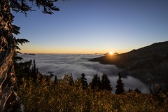 If you want to shine like a sun, first burn like a sun. A. P. J. Abdul Kalam(explore) (Element1983) Tags: natgeo mountaintop climb sun washingtonstate sony batis18mm batis zeiss nature epic adventure ngc