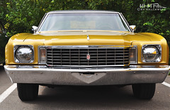 Golden Monte Carlo (Hi-Fi Fotos) Tags: gold 1970 chevy chevrolet montecarlo face vintage american classiccar gm chrome grille headlights nikon d5000 hififotos hallewell