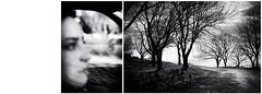 (Antonio Gutiérrez Fotografía) Tags: antoniogutierrezfotografia dinamocoworking retrato mirada mujer surrealismo soledad blanco blancoynegro blackandwhite diptico composicion concepto conceptual