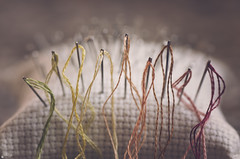 Needle and thread (Ali Llop) Tags: thread string tool macro needlecraft needle color art background work hole metal isolated craft embroidery cloth concept fashion closeup eyelet needlework cotton close warm sew space eye sewing textile in row inarow macromondays