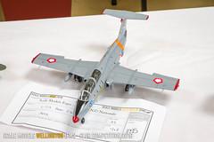 L-29 Aero Delfin - Gary Goddard