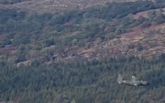 LFA7 in the wind..... (Newage2) Tags: raf laf7 jets wales tornado hawk lowlevel exit gr4 marham
