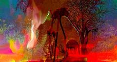 We kill the dreams (Bamboo Barnes - Artist.Com) Tags: blue red yellow orange green pink fire tree elephant surreal sky digitalart secondlife landscape light shadow photo painting daliselephant